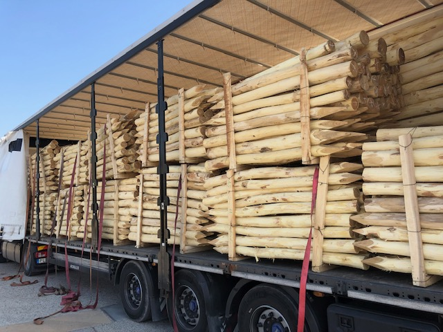 robinia palen transport